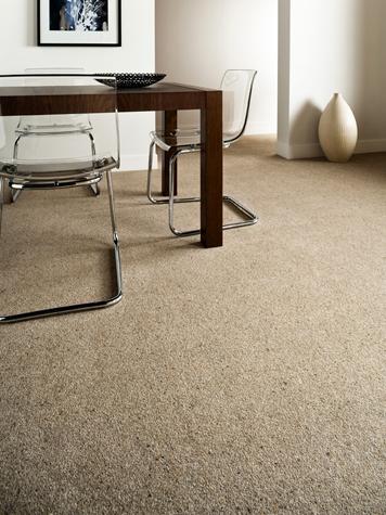 Carpet 6